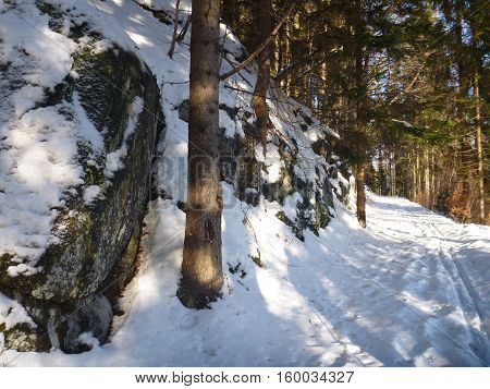 Winter In Jizerske Hory Ridge In Czech Republic