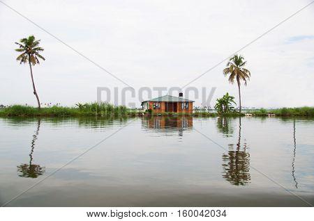 Hut between palms on a river bank landscape