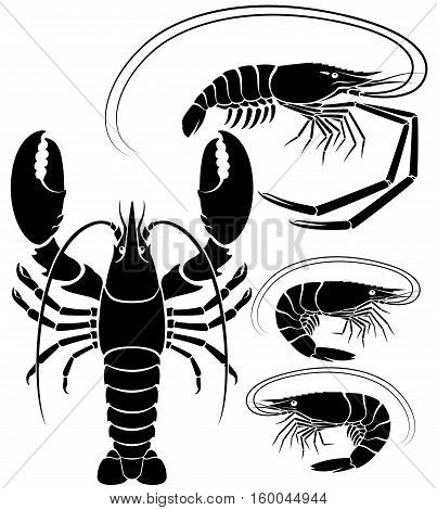 Lobster shrimp and prawn silhouette. Vector Illustrations.