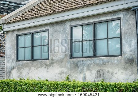 One window on the old brick wall covered with green leaves ivy plant