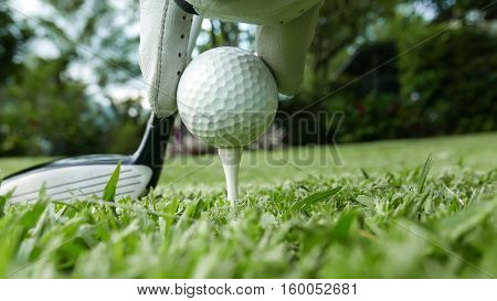 Close up of a hand with glove placing a golf ball on the tee with a club in the background