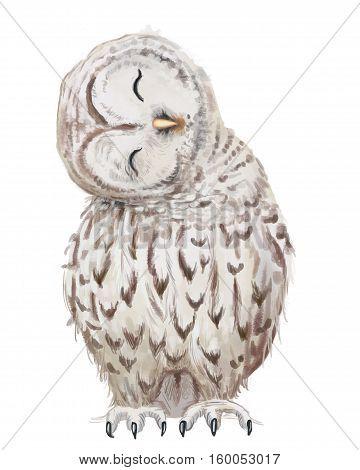 cute white cartoon owl raster portrait on white background