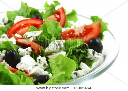vegetable salad and danish blue cheese over white