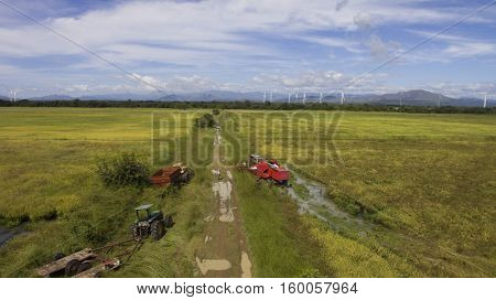 Machines getting ready to start the harvest at a rice field in Panama
