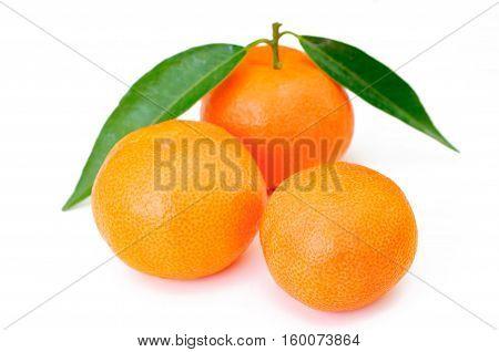 fresh orange fruits with leaf on white background
