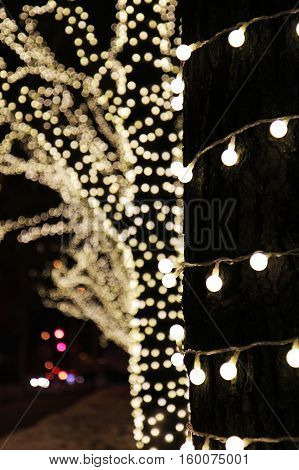 Christmas tree decoration background with lights glowing