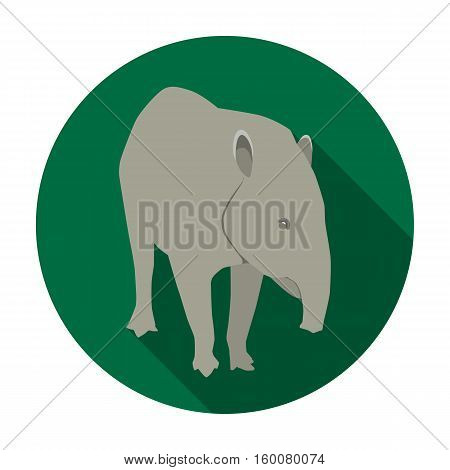 Mexican tapir icon in flat style isolated on white background. Mexico country symbol vector illustration.