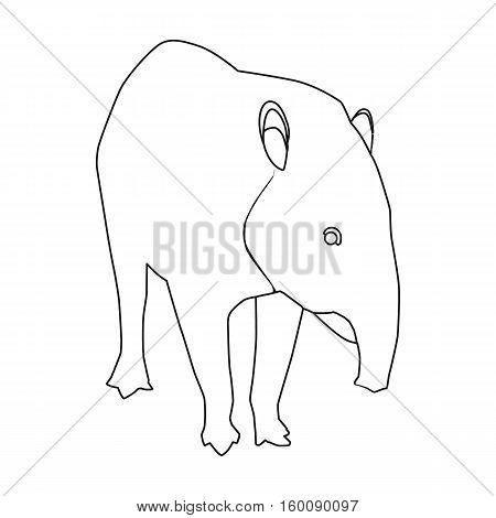 Mexican tapir icon in outline style isolated on white background. Mexico country symbol vector illustration.