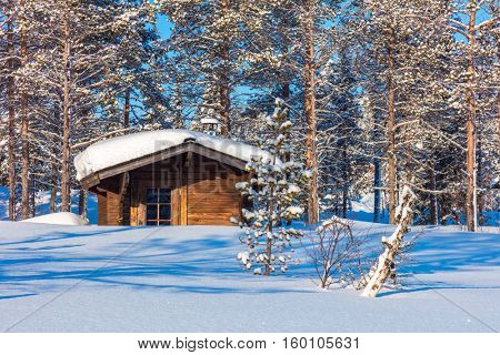 North Winter forest Landscape after blizzard with small wooden lodge, big trees covered snow, beautiful winter weather