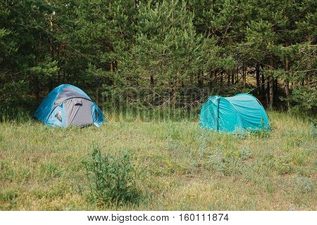 Tourist camp in the woods. Camping. rest area