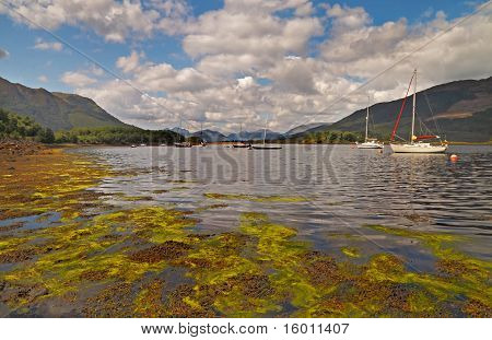 Loch Linnhe Moorings