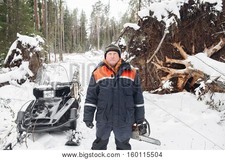 Proffesional Lumberjack hold hand saw. Winter wearing protection clothes using chainsaw. clean fallen trees.