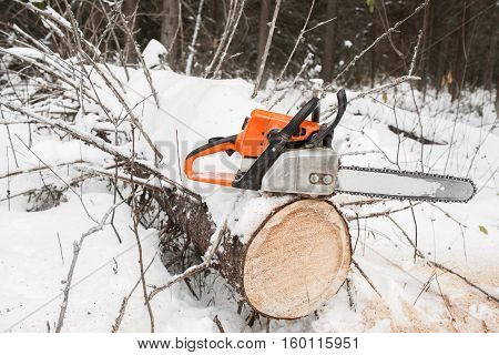 Chain saw on pine stump on the fallen tree in winter