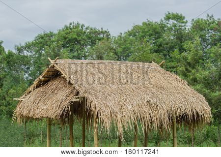 Hut in the countryside Asia roofed with Thatched.