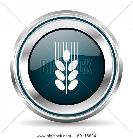 Grain vector icon. Chrome border round web button. Silver metallic pushbutton.