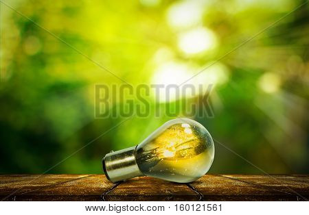 Light bulb with small plant growing inside with abstract fresh green blurred nature and bokeh background with wooden tabletop, Eco technology concepts.