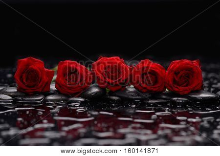 Five Red rose and therapy stones