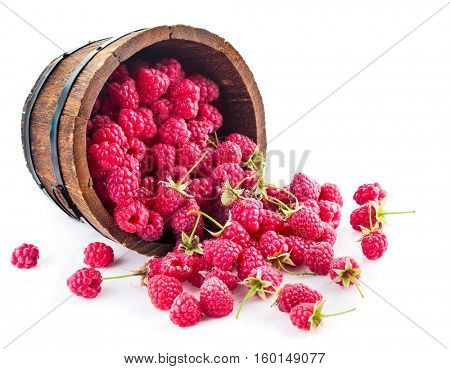 Berries raspberry in wooden basket. Isolated on white background