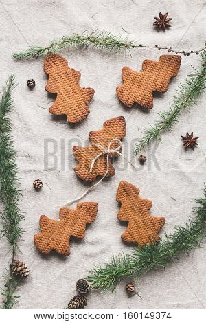 Christmas composition. Larch branches anise star christmas cookies. Flat lay top view