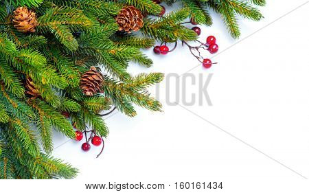Christmas Tree with Cones border isolated on a White background. New Year holiday evergreen tree, Xmas green art corner design. Branches of fir tree decorated with holly berry and cones. Winter.