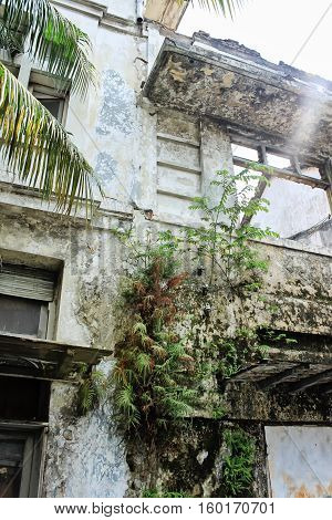 Abandoned building in Jakarta Indonesia. Detail of a moldy wall with cracked white paint. Sun beam on a right upper site of a photo. Urban scene architecture detail