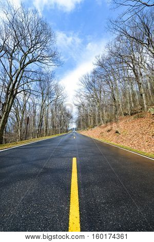 Asphalt road into winter forest - Shenandoah National Park, Virginia - USA
