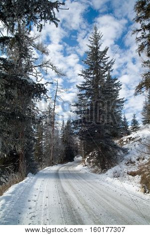 Winter mountain sunny road, Russia Altai Altay