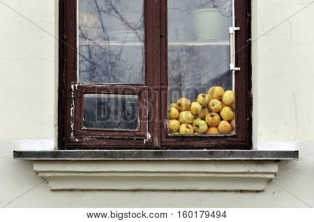 Old wooden window with yellow apples stored behind glass.