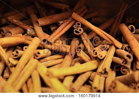 close-up of cinnamon sticks taken in spice souk Deira Dubai