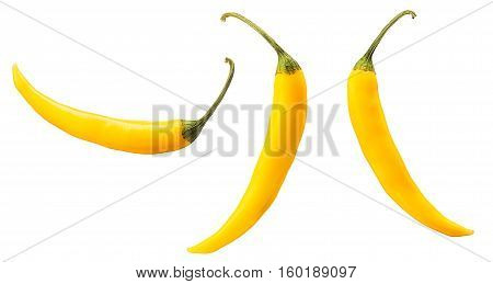 Hot yellow chili or chilli pepper isolated on white background