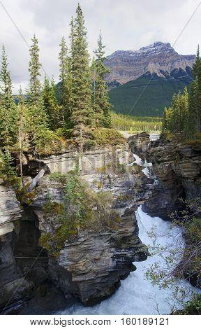 Athabasca Falls Near Jasper In Canada (alberta)