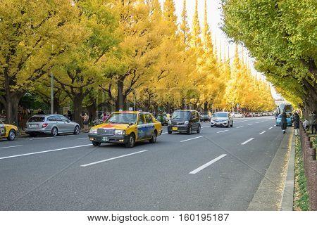 TOKYO, JAPAN - NOVEMBER 20, 2016. A lot of car on the road under ginkgo trees at Icho Namiki Avenue, Meiji Jingu Gaien Park, Tokyo, Japan.