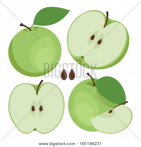 Green apple. Collection of whole and sliced green apple fruits. Vector illustration.