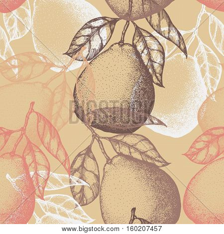 Citrus fruits seamless pattern. Vector background with pomelo