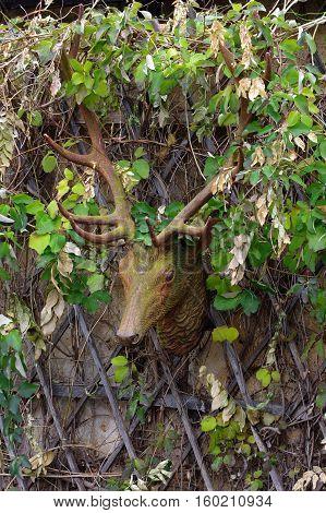 Deer head decoration garden sculpture art objects.