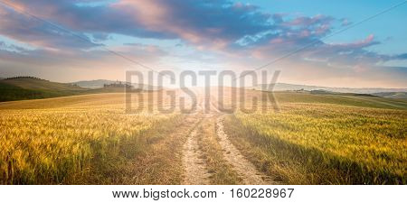 sunset over dirt road