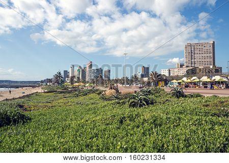 Dune Vegetation Against City Skyline In Durban South Africa