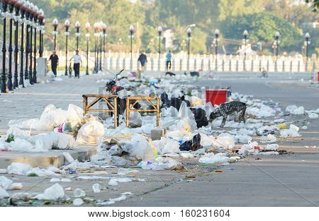 A road full of garbage / Dirty road / Pollution