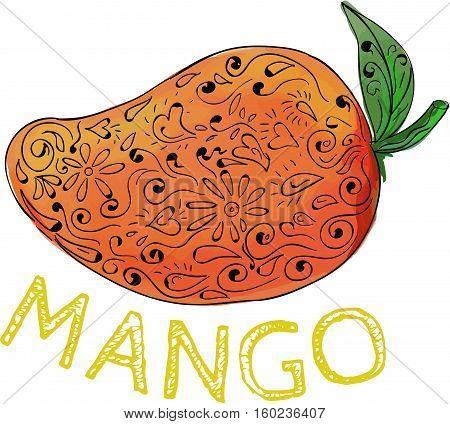 Mandala style illustration of a mango a juicy tropical stone fruit drupe belonging to the genus Mangifera set on isolated white background with the word text Mango.