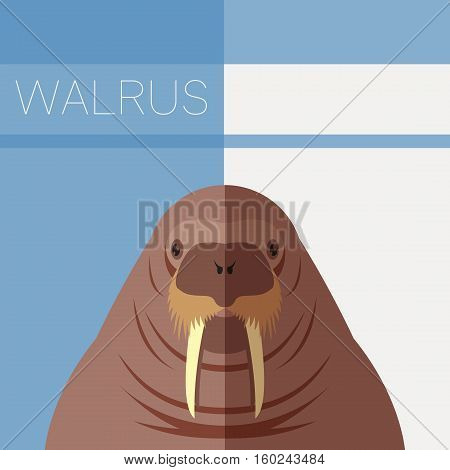 Vector imge of the Walrus flat postcard