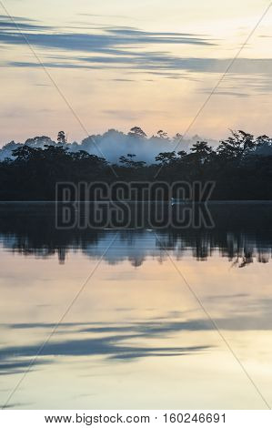 Early Morning In Amazonian Rainforest. Lake Cuyabeno Laguna Grande. Ecuador