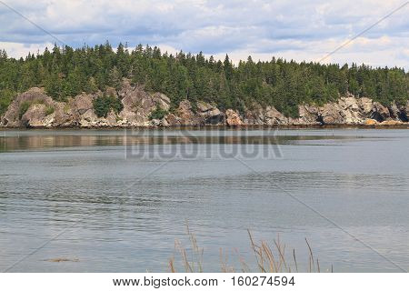 Fundy Bay Atlantic Ocean New Brunswick multimillion years geological structures differ from clay form by volcanic ash to lava rocks like on picture of Campobello Island coastline with pine trees