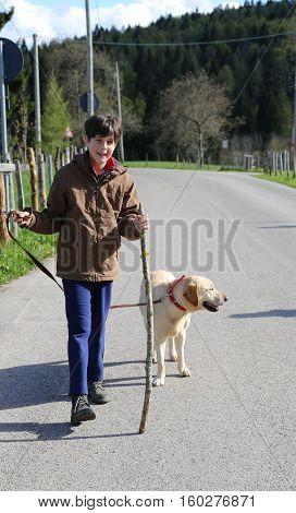 Cute Little Boy Walks With His Dog On A Leash