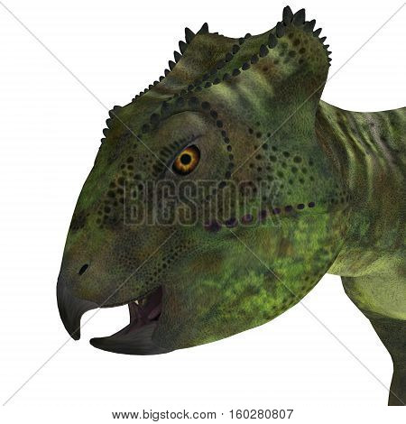 Archaeoceratops Dinosaur Head 3D Illustration - Archaeoceratops was a Ceratopsian herbivorous dinosaur that lived in China in the Cretaceous Period.