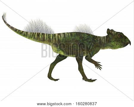 Archaeoceratops Dinosaur Side Profile 3D Illustration  - Archaeoceratops was a Ceratopsian herbivorous dinosaur that lived in China in the Cretaceous Period.