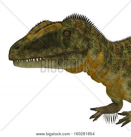 Concavenator Dinosaur Head 3D Illustration - Concavenator was a carnivorous theropod dinosaur that lived in Spain in the Cretaceous Period.