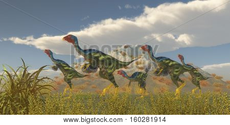 Caudipteryx Dinosaur Flock 3D Illustration - Caudipteryx was a dinosaur reptile bird that lived in China in the Cretaceous Period.