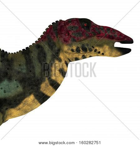 Shuangmiaosaurus Dinosaur Head 3D Illustration - Shuangmiaosaurus was a herbivorous iguanodont dinosaur that lived in China in the Cretaceous Period.