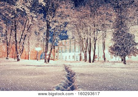 Winter landscape - city winter park with frosted winter trees under falling snow in the winter night. Winter night scene of snowy night park. Colorful winter snowy scene with falling snow and Christmas mood