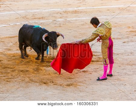 MOITA LISBON, PORTUGAL - SEPTEMBER 14: Matador and bull in tourada bullfight on September 14, 2016 in Moita Lisbon, Portugal.